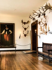 The Horn Room with pictures and antlers on the walls