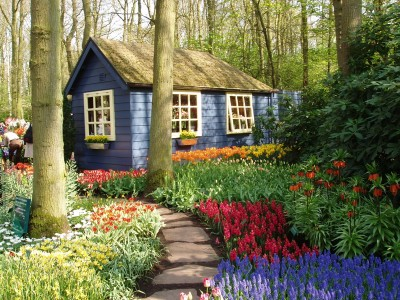 Colourful flowers with a hut by the trees at Keukenhof gardens
