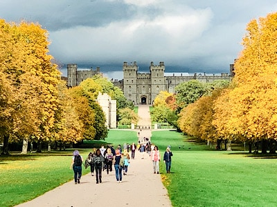 A view of Windsor Castle from the Long Walk with the autumn colours of leaves on the trees