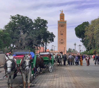 The Koutoubia mosque Marrakech with horses and carriages in the street