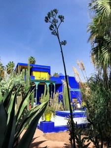 A vibrant blue building in the Majorelle Garden Marrakech