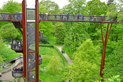 The treetop walkway in the Royal Botanic Gardens Kew that goes high above the trees