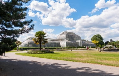 A view of the Palm House in Kew Gardens