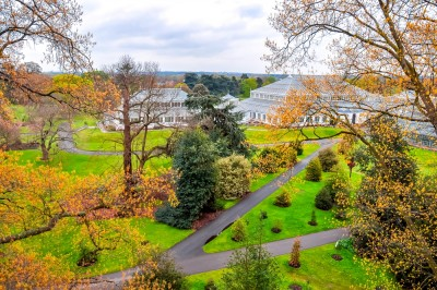A view out over part of the gardens from above with the Temperate House in the background